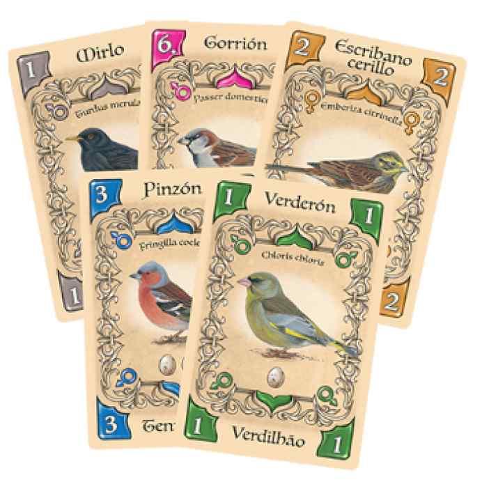 Pájaros cantores TABLERUM